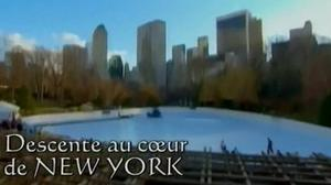 Documentaire Descente au coeur de New York