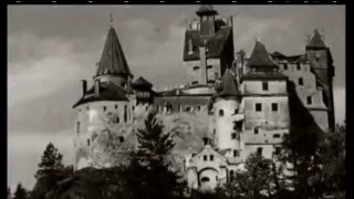 Documentaire Les vampires