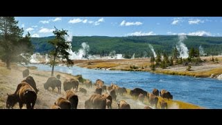 Documentaire Mysterieuse disparition au Yellowstone