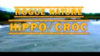 Documentaire Nature féroce – Hippopotame & crocodile