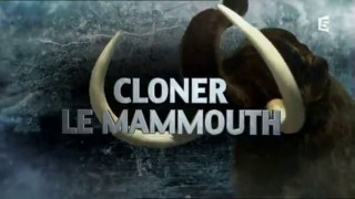 Cloner-le-Mammouth