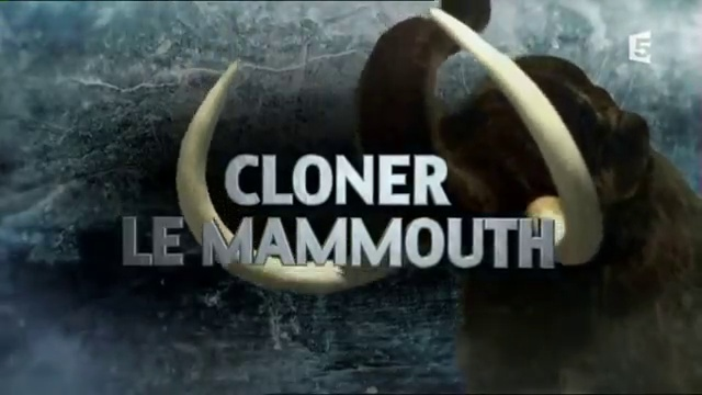Documentaire Cloner le mammouth