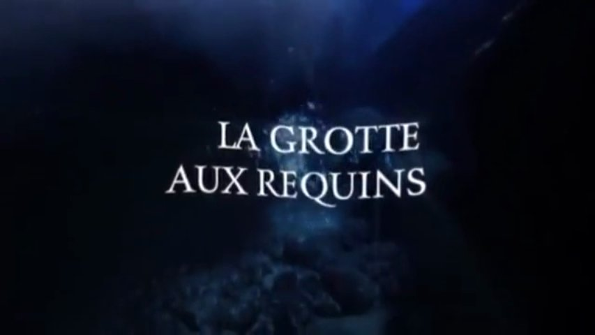 Documentaire La grotte aux requins