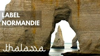 Documentaire Label Normandie