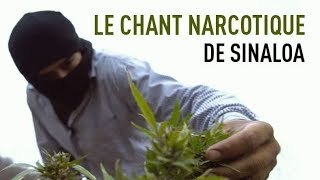 Documentaire Le chant narcotique de Sinaloa