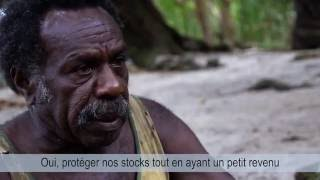 Documentaire Aires marines taboues du Vanuatu