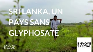 Documentaire Sri Lanka, un pays sans glyphosate