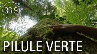 Documentaire Comment la nature soigne