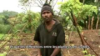 Documentaire Nos racines (2/2)