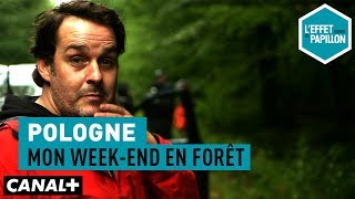 Documentaire Pologne : mon week-end en forêt