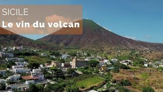 Documentaire Sicile, le vin du volcan