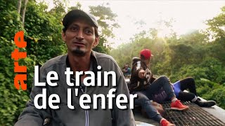 Documentaire Mexique : les migrants sur « La Bestia »