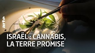 Documentaire Israël : cannabis, la terre promise