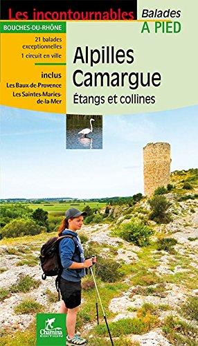 Alpilles Camargue - étangs et collines