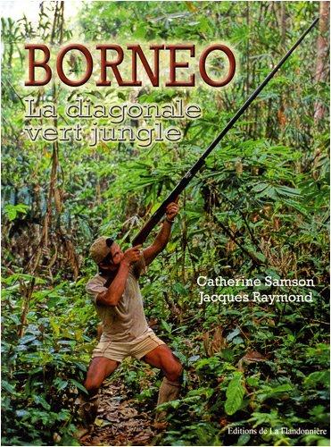 Bornéo : La diagonale vert jungle