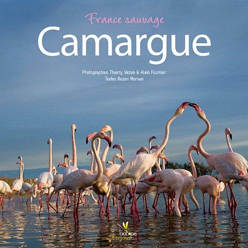 Camargue