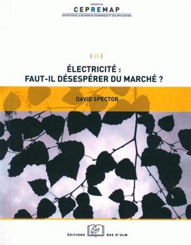 Electricite:Faut-Il Desesperer du Marche ?