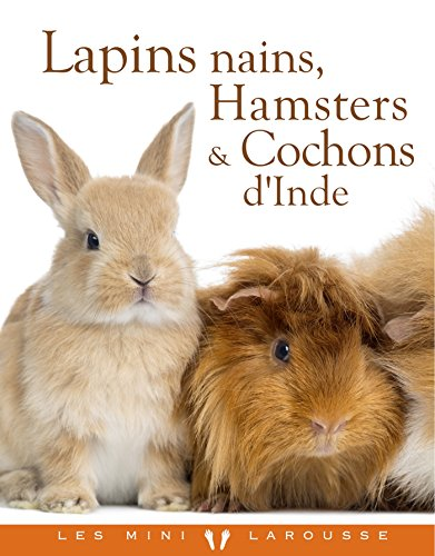Lapins nains, Hamsters et Cochons d'Inde