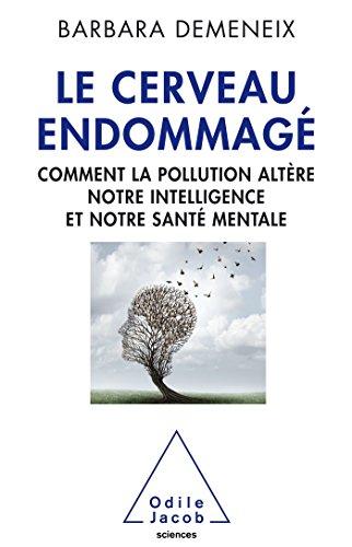 Le Cerveau endommagé: Comment la pollution altère notre intelligence et notre santé