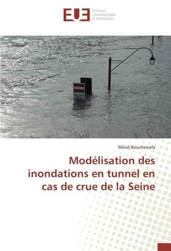 Modelisation des inondations en tunnel en cas de crue de la Seine