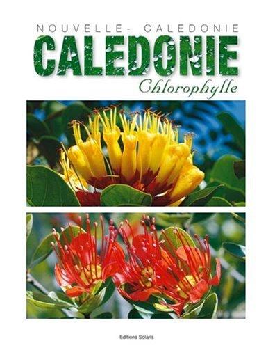 Nouvelle-Calédonie Chlorophylle