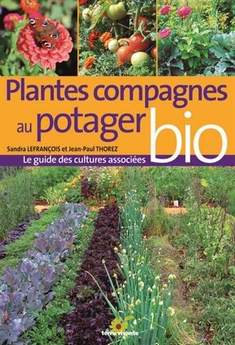 Plantes compagnes au potager bio : Le guide des cultures associées