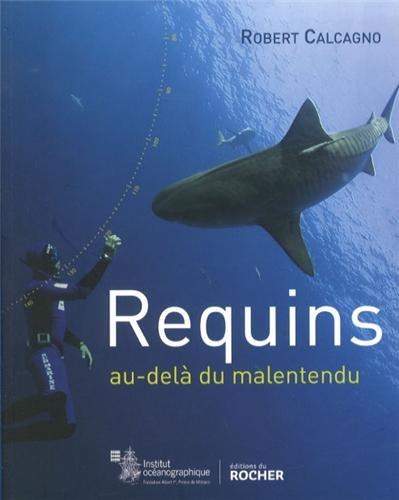 Requins: Au-delà du malentendu