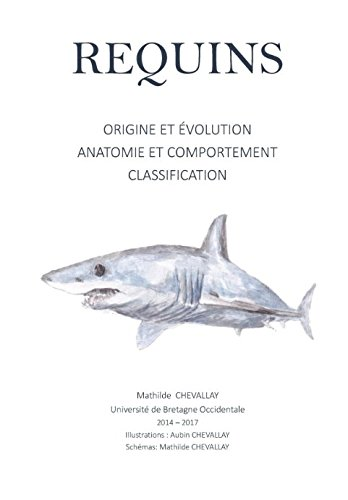 Requins: Origine et Evolution, Anatomie et Comportement, Classification