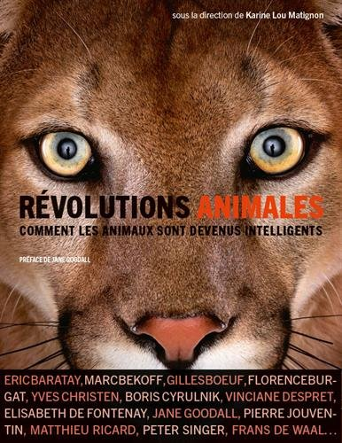 Révolutions animales: Comment les animaux sont devenus intelligents