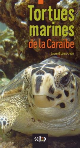 Tortues Marines de la Caraibe