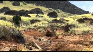 Documentaire L'île aux ovnis