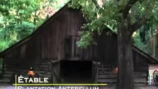 Documentaire TAPS Les Traqueurs de fantômes S06E20