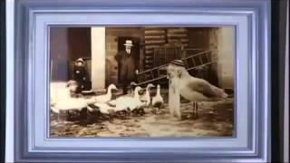 Documentaire OVNI, l'incroyable vérité