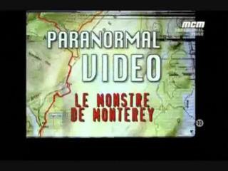 Documentaire Le monstre de Monterey