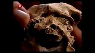 Documentaire Le cimetière des gladiateurs