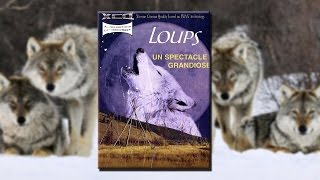 Documentaire Le loup, un spectacle grandiose