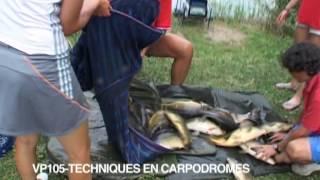 Documentaire Pêche au coup à la bolognaise avec Gérard Trinquier