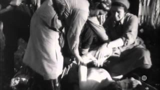 Documentaire Stalingrad, plus un pas en arrière