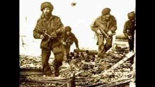 Documentaire La bataille d'Arnhem : opération market garden