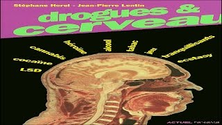Documentaire Drogues et cerveau – Hallucinogènes et ecstasy