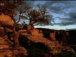 Documentaire Wyatt Earp – Un Justicier du Far West