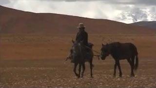 Documentaire Le troisième pôle, voyage aux fins fonds du Tibet