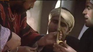 Documentaire Qatna, la cité oubliée