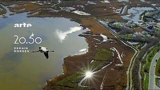 Documentaire Un tour du monde à vol d'oiseau