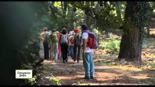 Documentaire Echappées belles – Toscane, intensément