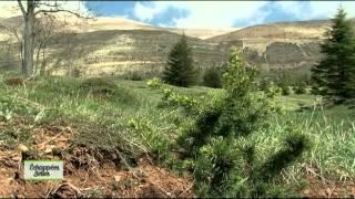 Documentaire Echappées belles – Liban