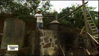 Documentaire Échappées belles – La Réunion