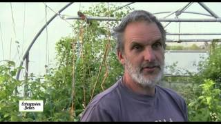 Documentaire Echappées belles – Écosse