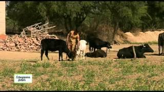 Documentaire Échappées belles – Inde, Rajasthan