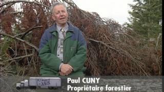Documentaire C'est pas sorcier –  Bois, hêtre ou ne pas hêtre